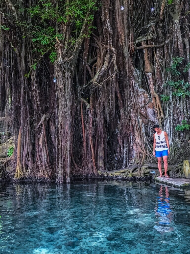 balete tree siquijor philippines