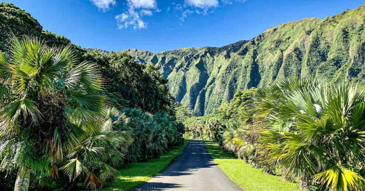 Where to Stay in Oahu  – Best Area to Stay in 2020